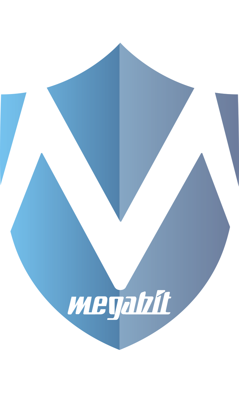 logotipo_megabit